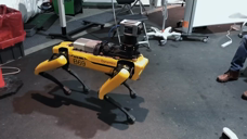 Boston Dynamics 波士顿动力四足机器人