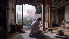 SK 电信公司广告 韩国2020
