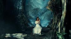 美妆-神秘森林