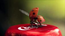 可口可乐 昆虫篇