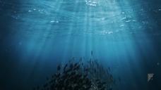 环保公益 垃圾做成海洋生物