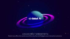 Rokid AI  智能语音平台